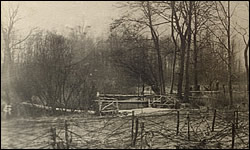 German photo of barb wire in the Chateau Thierry Sector.